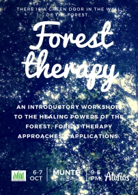 forest therapy jpg