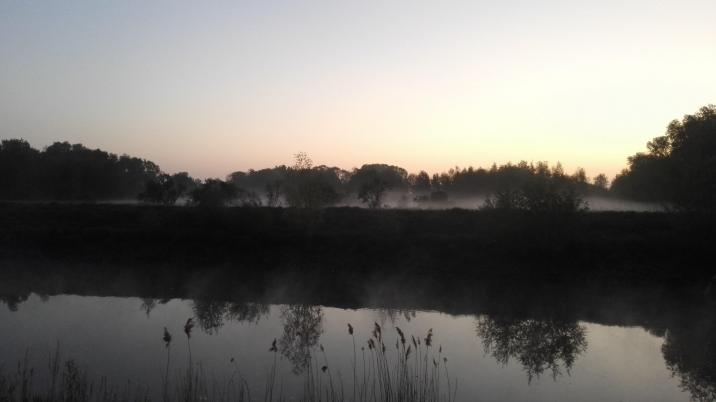 The Schelde at 6 am.